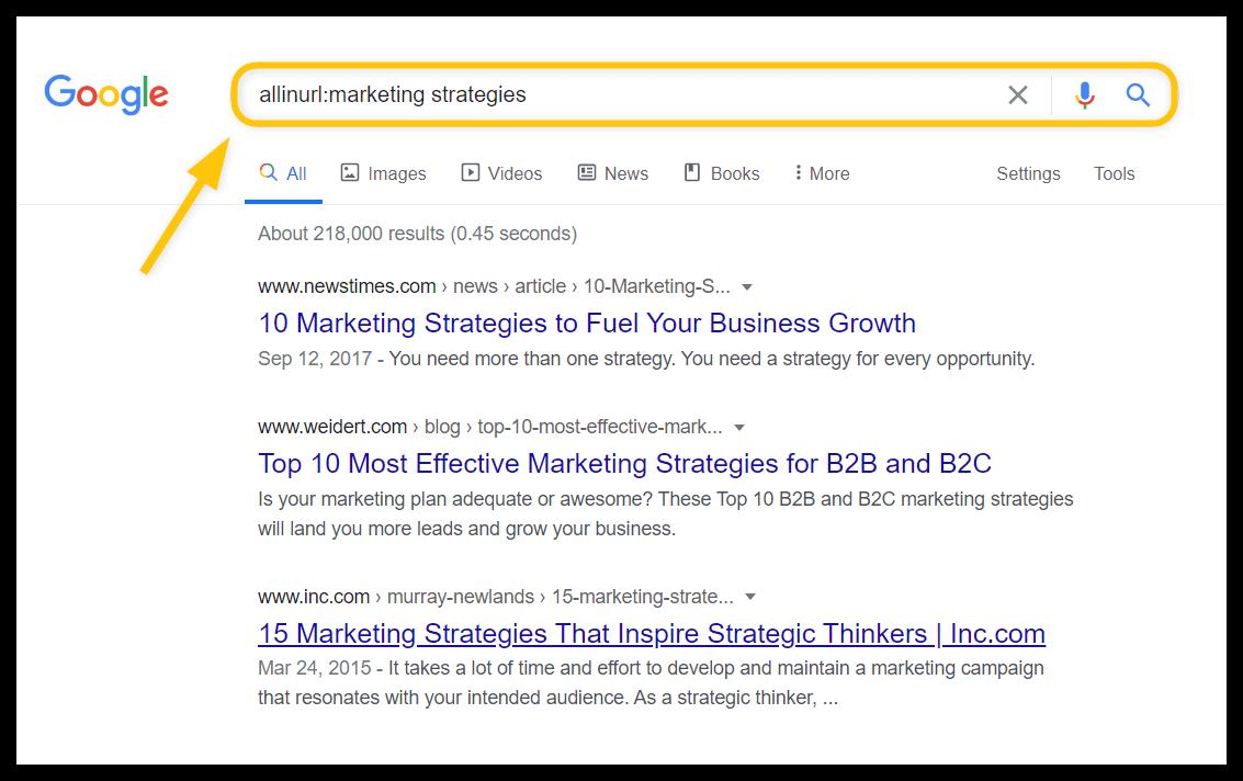 allinurl search operator