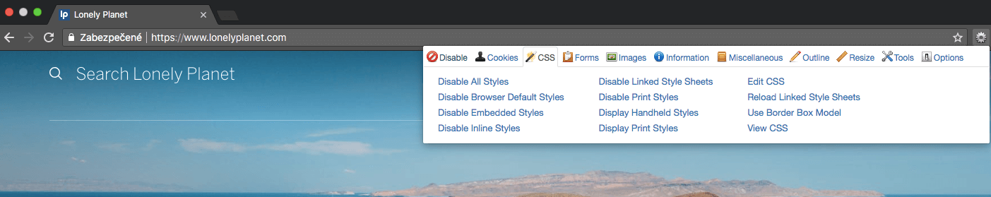 Web Developer Tool for seeing a page without CSS and JS